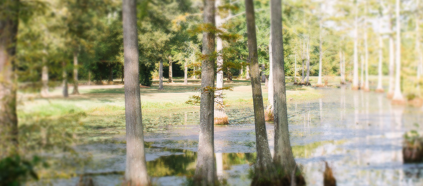 McClain Lodge - Overnight Stay
