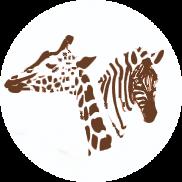 single-image-icon-safari-182x182