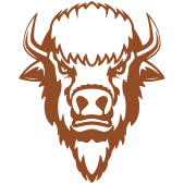 bison-head-drawing-19